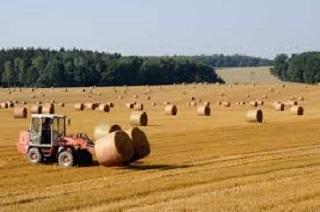 agricoltura sospensione mutui - trs consulting