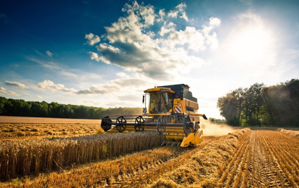 cambiale agraria ismea beneficiari - trsconsulting