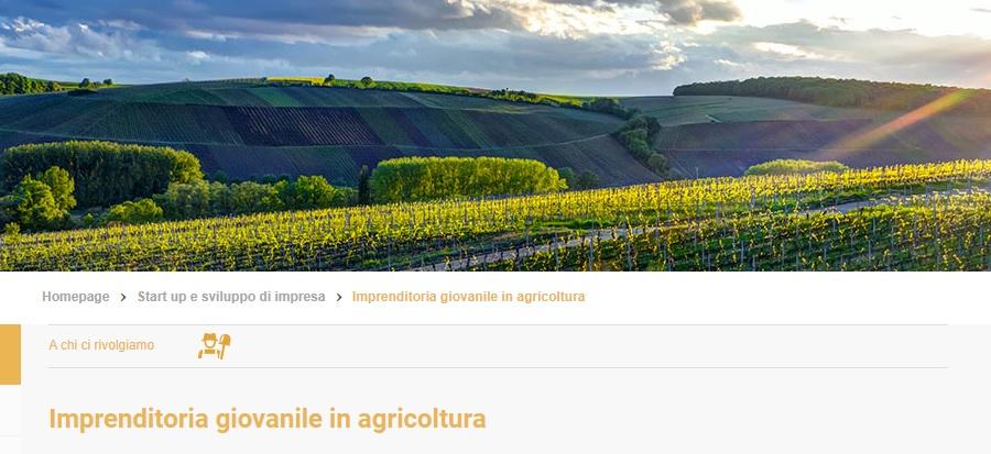 fondo perduto Ismea tutta Italia aziende agricole fondo perduto - trsconsulting