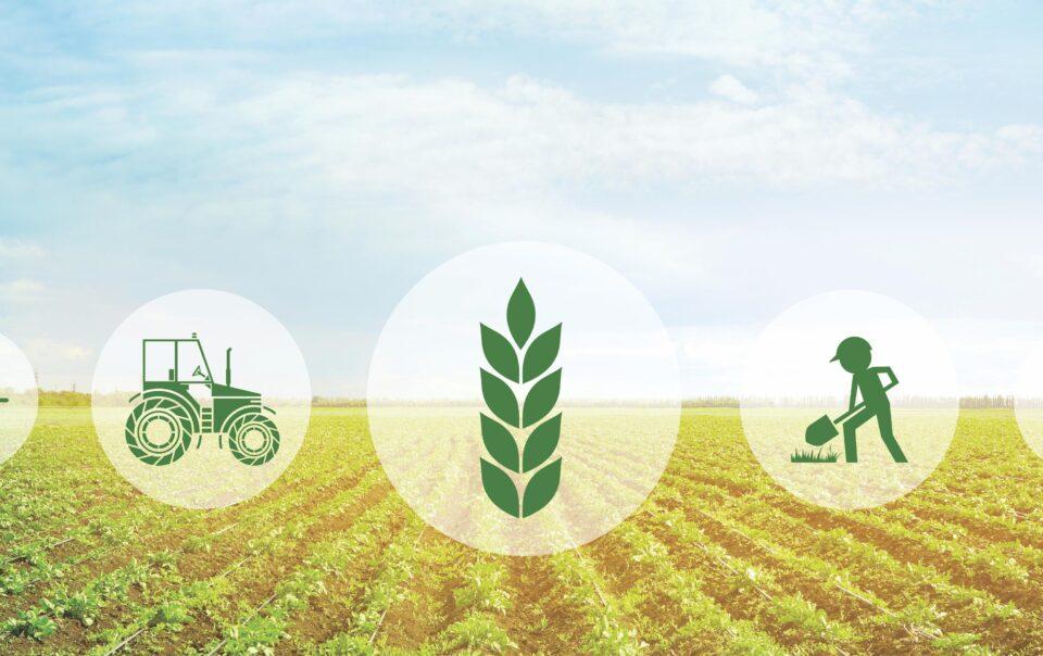 manovra bilancio 2021 agricoltura - trsconsulting